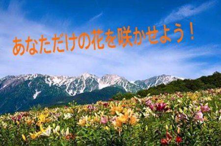 SMAPの「世界に一つだけの花」